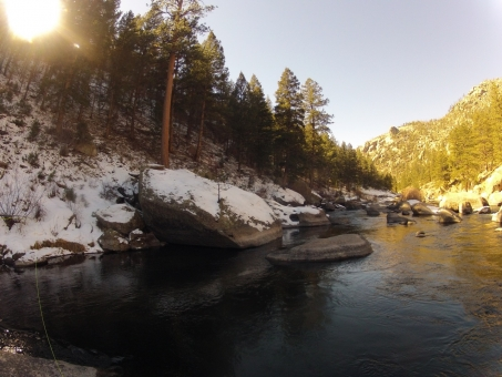 Cheesman Canyon Fly Fishing