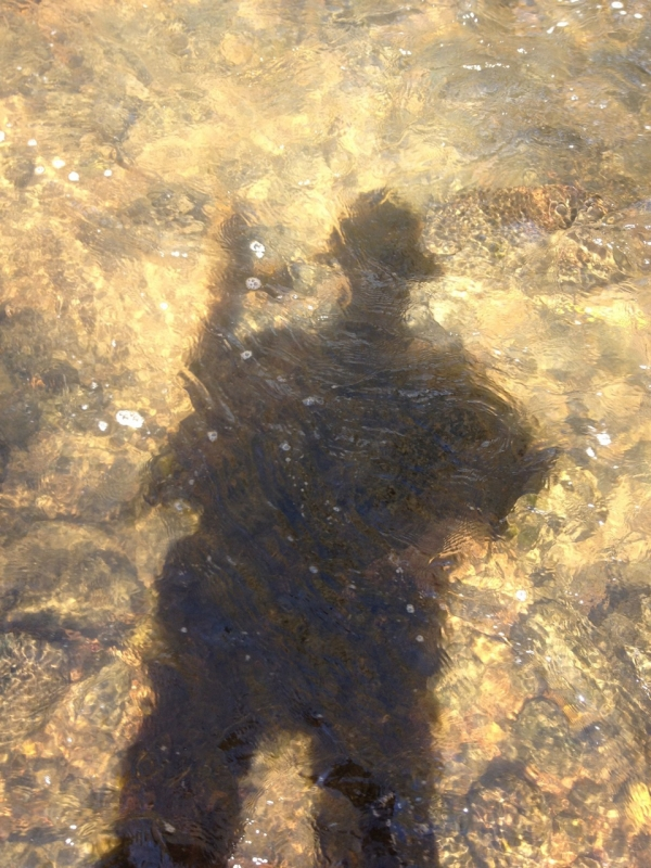 Shadow on the creek