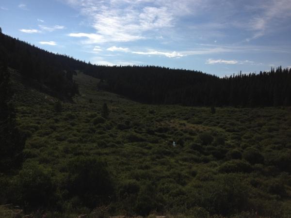 Lost Creek Valley