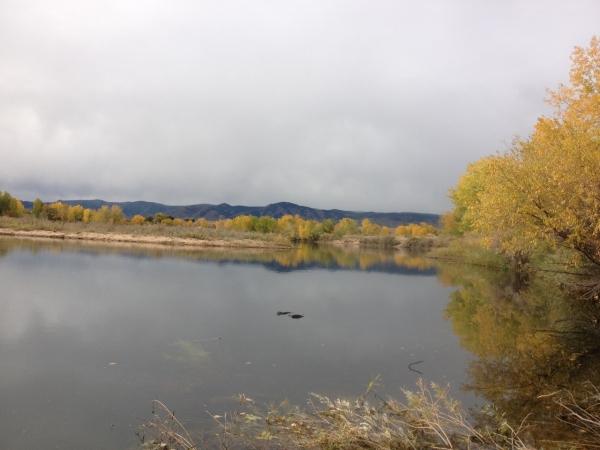 October  Ponds