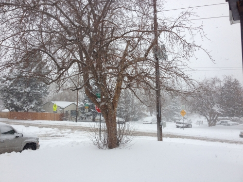 Super Snow 2