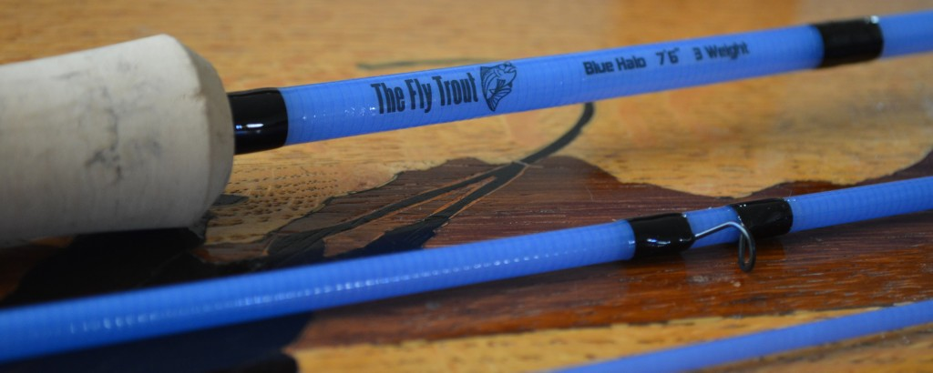 Fly Rod Close-up
