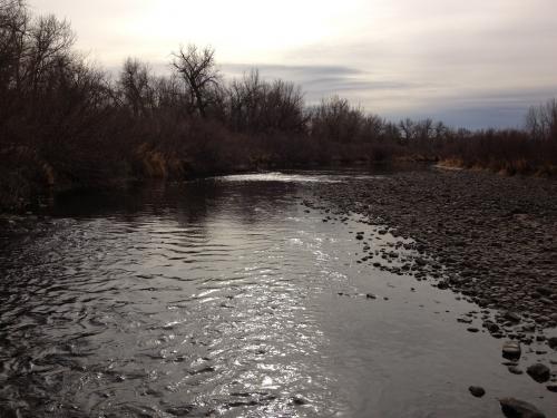 South Platte Littleton 2