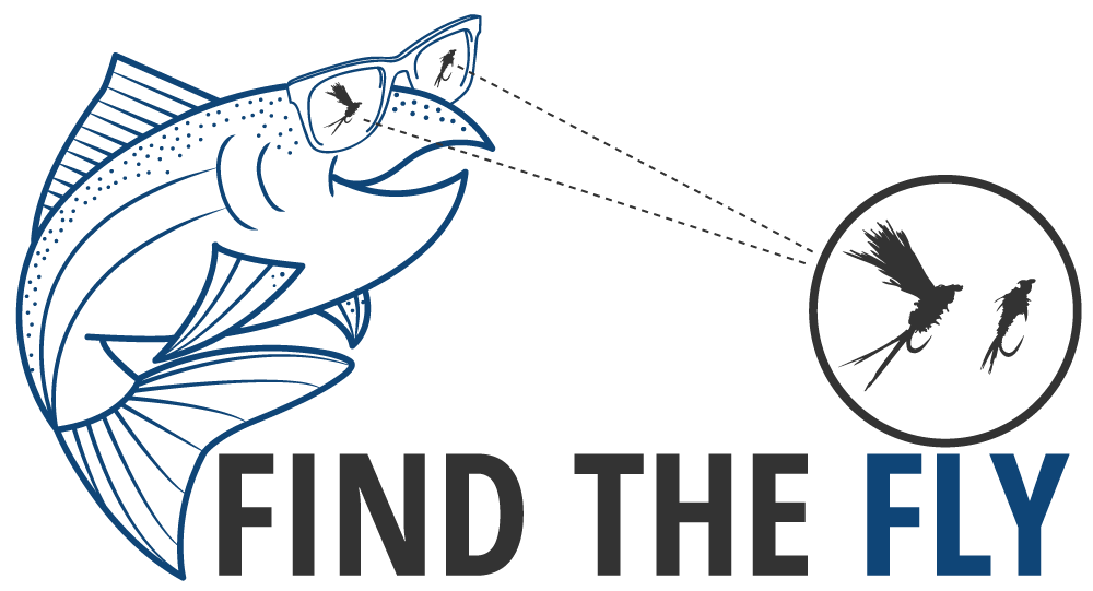 findthefly